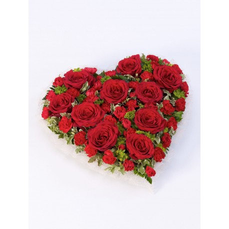 Red Rose and Carnation Heart